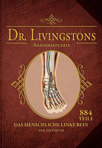 Dr. Livingstons Anatomiepuzzle: Das linke Bein