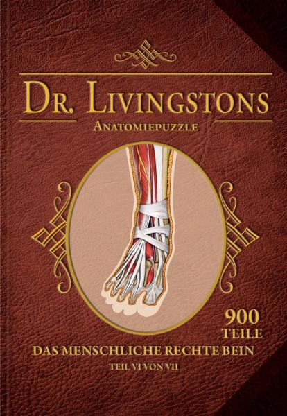 Dr. Livingstons Anatomiepuzzle: Das rechte Bein