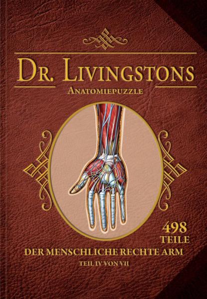 Dr. Livingstons Anatomiepuzzle: Der rechte Arm